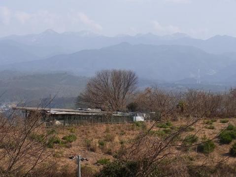 吉野川ポタ1176