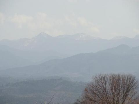 吉野川ポタ1173