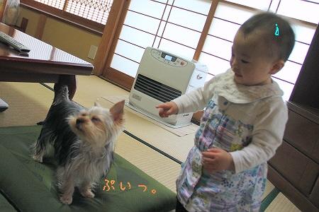 姪っ子とココちゃん3