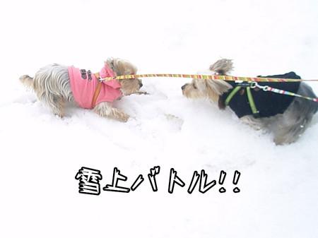 雪上バトル!