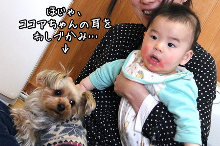ほじゃ&ココアちゃん