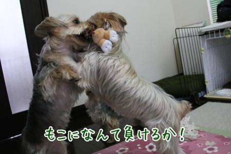 まりお「もこになんて負けない!」