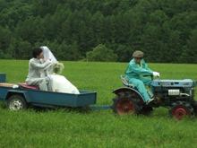 牧草畑ウェディング002