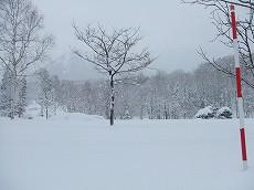 080106雪景色001