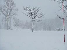080109雪景色001