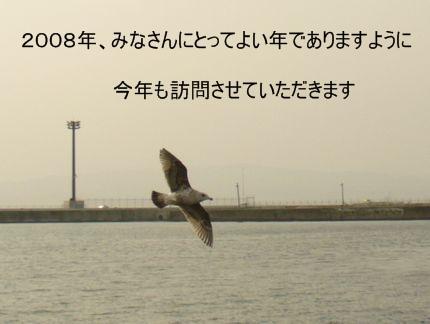 函館港とカモメ