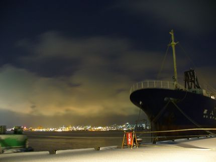 新年の函館港