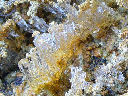 岸辺の霜柱1
