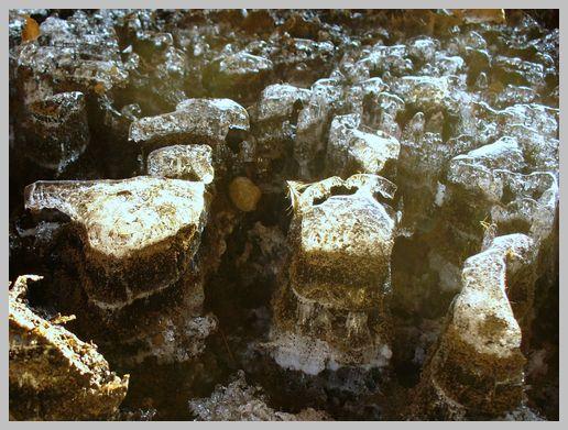 光る氷の峡谷1