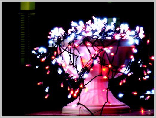 光のプランター