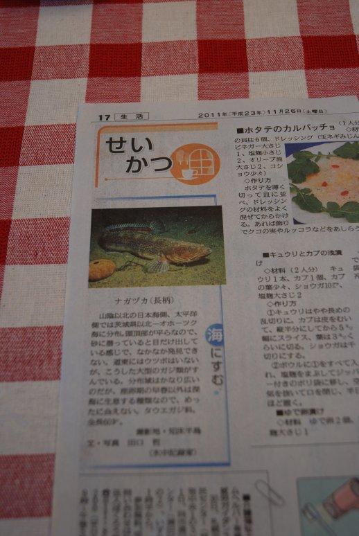 newspaper15-10.jpg