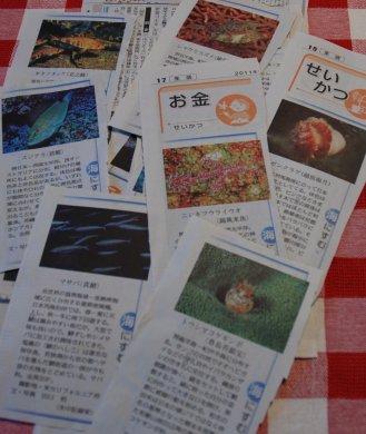 newspaper15-4.jpg
