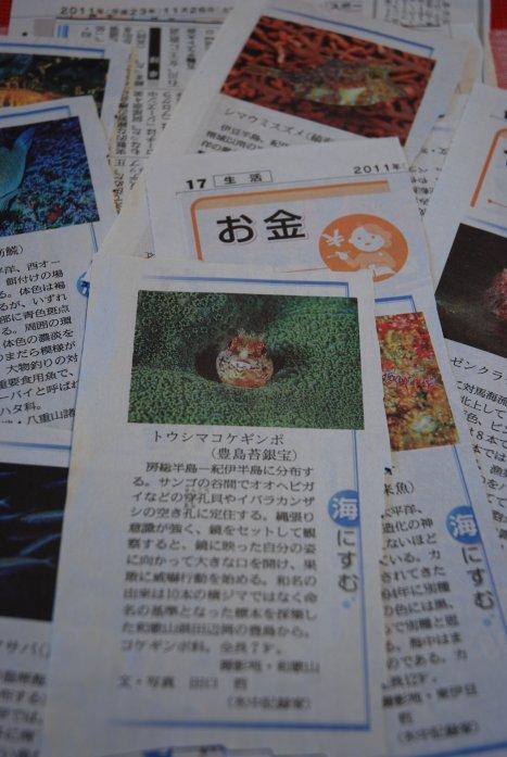 newspaper15-6.jpg