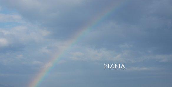 rainbow15-5.jpg