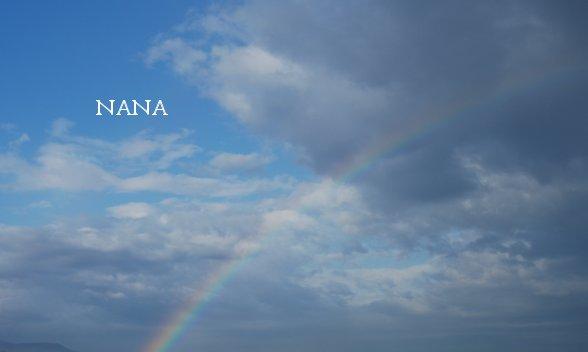 rainbow15-8.jpg