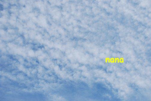 sky15-43.jpg