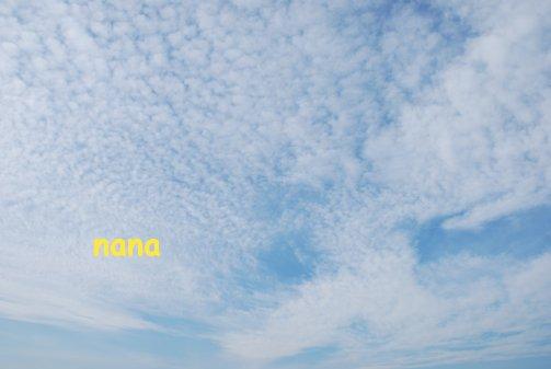 sky15-48.jpg