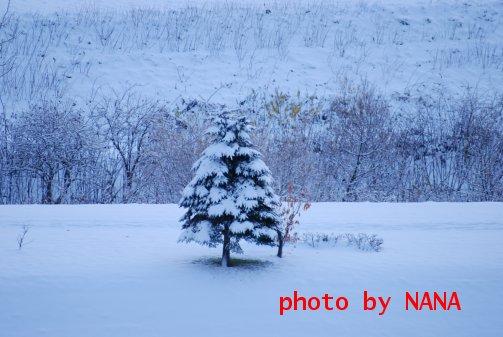 winter15-1.jpg