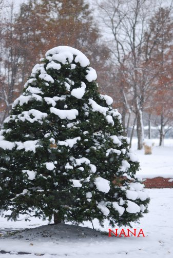 winter15-10.jpg