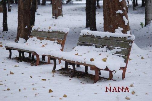 winter15-11.jpg