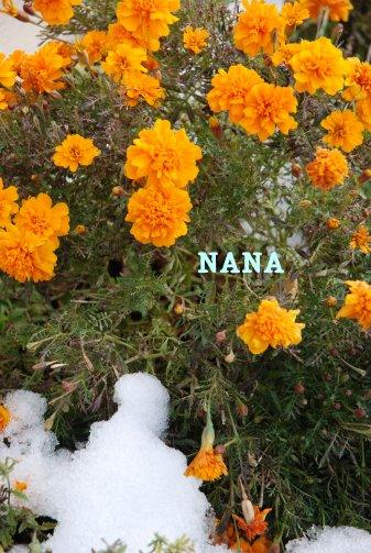 winter15-4.jpg