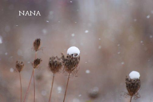 winter15-9.jpg