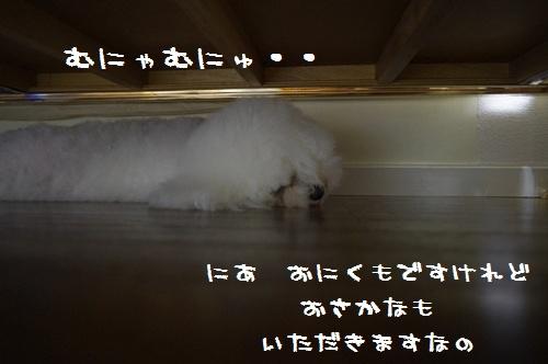 _IGP0897.jpg
