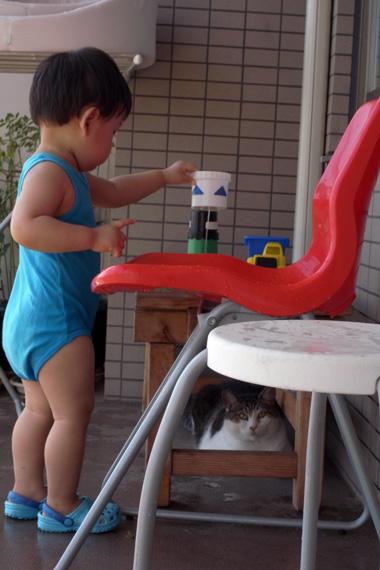 アン子は水に濡れるのは嫌いじゃないようです。冬はお風呂にも入ってくるし。