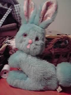 ウサギメジャー