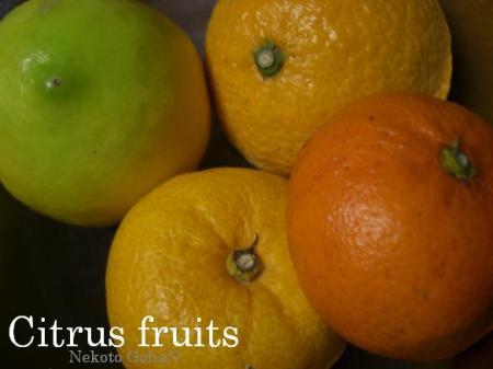 柑橘類は皮だけ使います。
