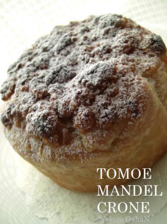 TomoeMandelCrone