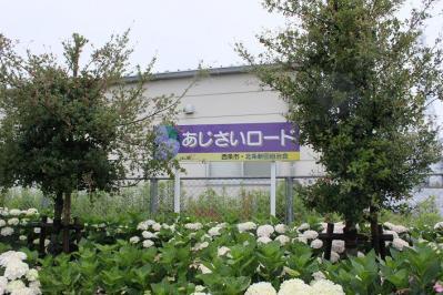2011061201.jpg