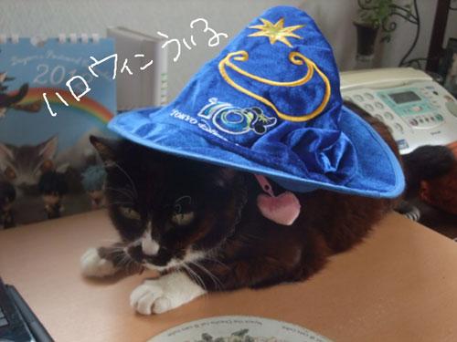 20111023_4_20111024112105.jpg