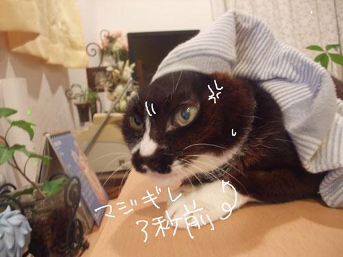 20111030_6.jpg