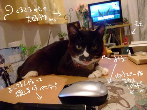 20111117_2.jpg