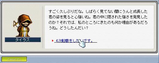 Maple289.jpg