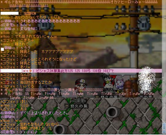 Maple315.jpg