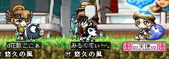 Maple402.jpg