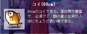 Maple448.jpg