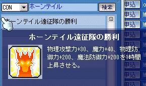 Maple589.jpg