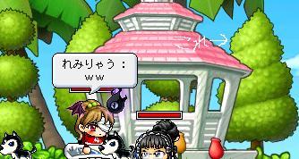 Maple771.jpg