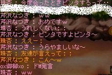 Maple944.jpg