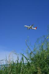 JAC DHC-8-Q400&菜の花070511