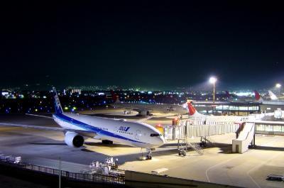 10月最終日の夜の展望デッキ(by CyberShot)