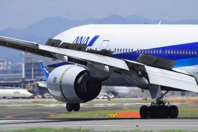 ANA B777-381 Landing@スカイランドHARADA
