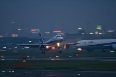 ANA A320-211 Liftup@AFO(Evening)