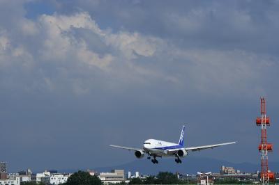 ANA B777-281 Landing@スカイランドHARADA