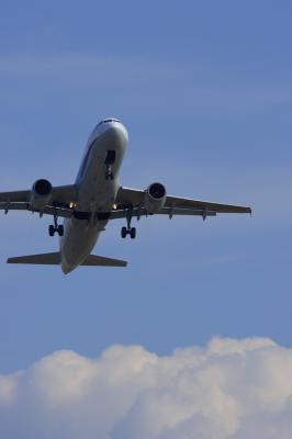 ANA A320 Airborne@AFO