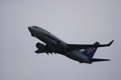 ANA B737-781 Departure@猪名川西側土手