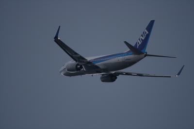 ANA B737-781 Departure2@猪名川西側土手